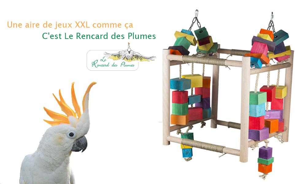 aire-de-jeux-perroquet-jouets-perroquet-
