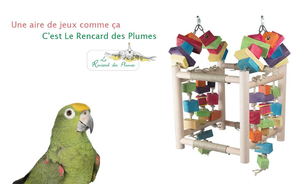 aire-de-jeux-perroquets-jouet-perroquets