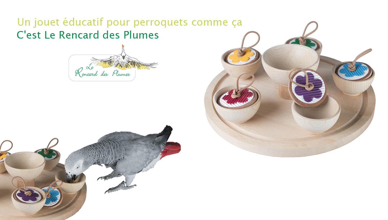 jouet-educatif-perroquets-perruches-fora