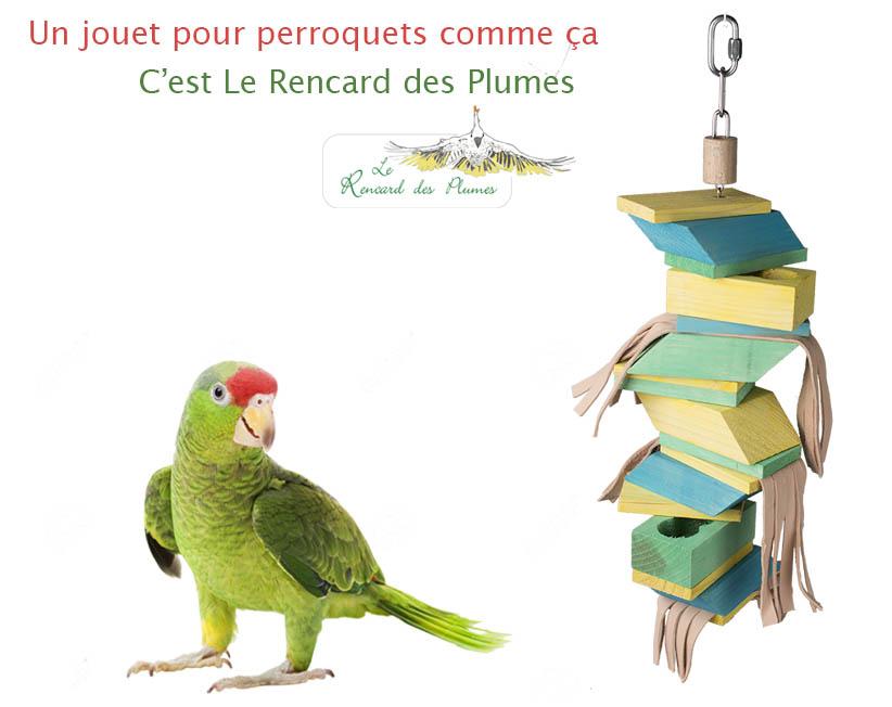 jouet-foraging-perroquet-ara-rencard-des