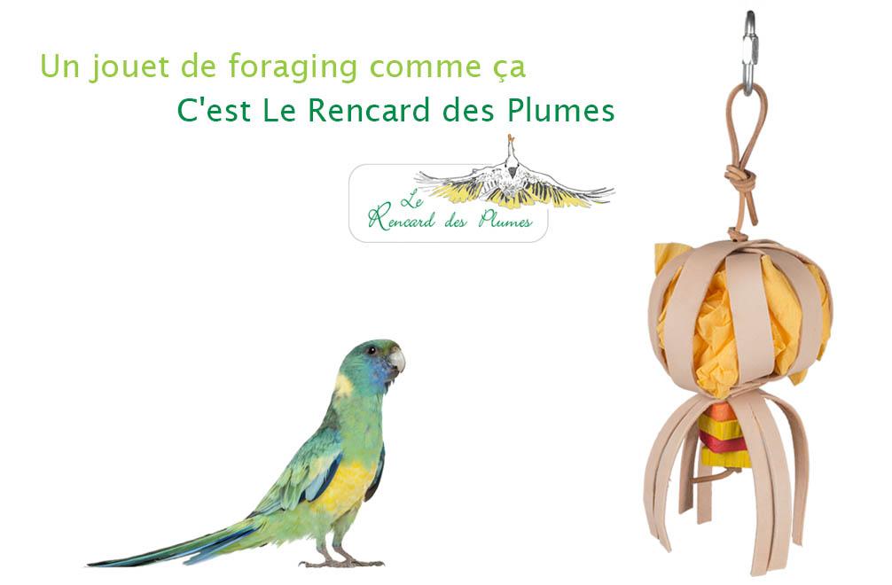 jouet-foraging-perruches-petit-perroquet