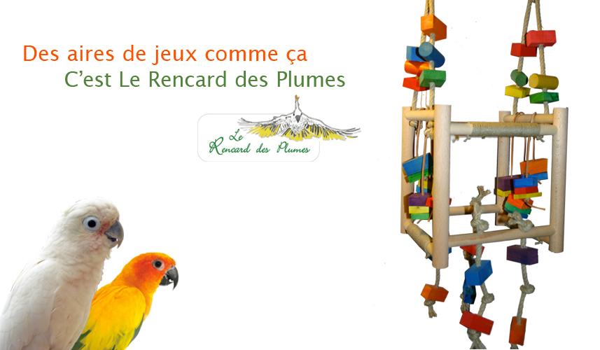 jouet-perroquets-perchoir-aire-de-jeux-r