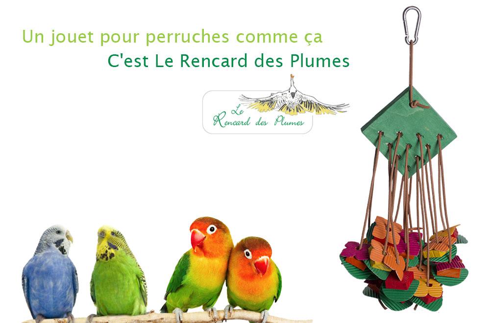 jouet-perruches-petits-perroquets-exotic