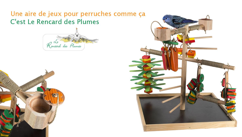 jouets-perruches-aire-de-jeux-pour-perru