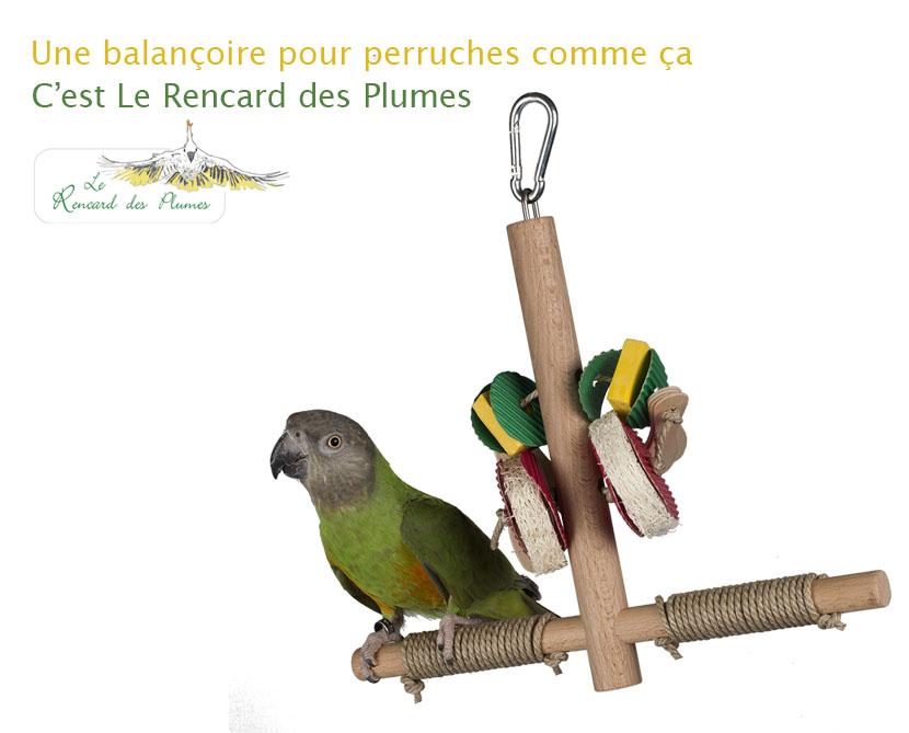 jouets-perruches-balancoire-petits-perro