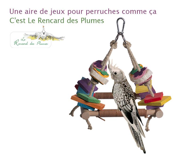 jouets-perruches-bois-petit-carrelet-ren