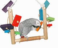Boutique de jouets et accessoires pour perroquetsgris-header.jpg