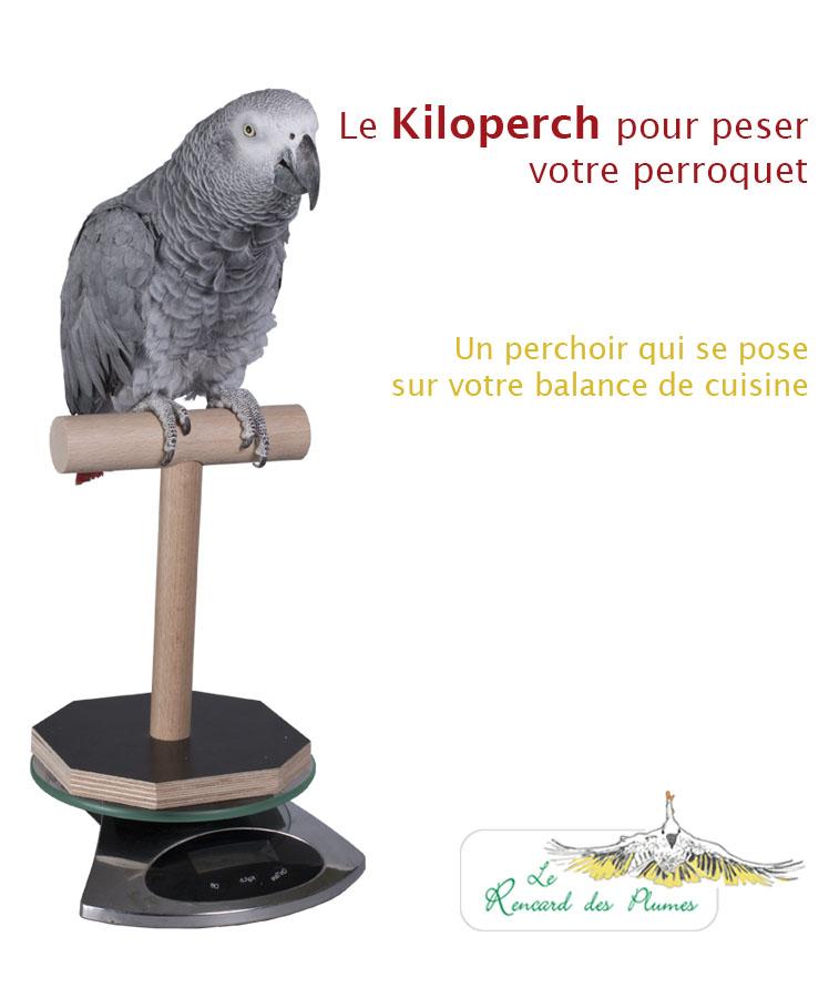 perchoirs-pour-perruches-et-perroquets-e