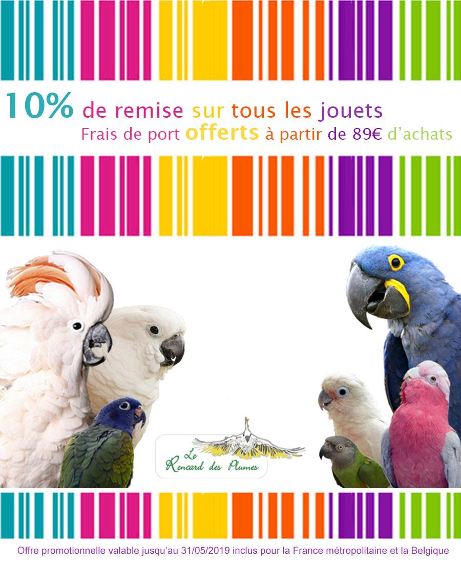 Jouets perroquets boutique jouet de perroquet